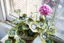 Rośliny ♦ Plants / rośliny, porady, doniczki, ogrody, szklarnie ♦ plants, tips, pots, gardens, greenhouses