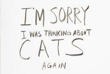 Kocie sprawy ♦ Cats / Piękne rzeczy z kocim motywem ♦ Beautiful things and cats