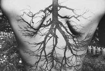 Tattoos / Art in the human body.