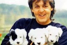Beatles with animals