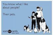 veterinarian stuff