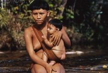Brasil indígena. / Olhares sobre a vida indígena.
