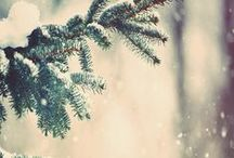 snow•