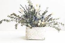 Arranjos Florais Secos | Dried Flower Arrangements / Estes são alguns dos Arranjos Florais que criamos para decoração de lojas-escritórios-hotéis-restaurantes-particulares com flores secas/desidratadas.  Para encomendas e pedidos de orçamentos envie-nos o seu email para isabel.castrofreitas@gmail.com. Estamos disponíveis para o receber no nosso atelier, com marcação prévia. Obrigada! Isabel Castro Freitas