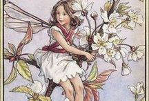 The Flower Fairies / By Cicely Mary Barker