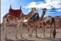 Morocco - Voyages Paradis Maroc DMC