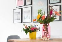 Anthurium & Interior / Inspiration for the anthurium flower and plant in your interion.