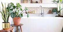 Urban Jungle Bathroom / How to create a Urban Jungle Bathroom | Zo maak jij je eigen Urban Jungle badkamer!
