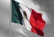 Flag - Mexican / by Ellen Callahan