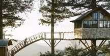 Tree Houses / Not just for kids