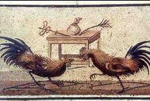 mosaici - area vesuviana / mosaici provenienti da: Pompei, Ercolano, Stabia..