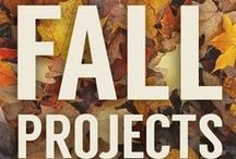 FALL / Check out some great ideas for Fall.  Decorating, Crafts, Things to Do, Places to Go and a Season to Celebrate!