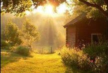 Sommer-Sonne