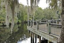 Things To Do,Places to See! / Ready to go exploring to the sights around us ?Let the fun begin! / by Brunswick Plantation Living