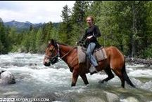 Horseback Adventures / Horesebacking throughout Canada