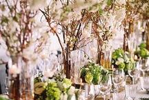 Wedding decor | Modern chic / Wedding & Event videography & cinematography film production specialists at http://www.whitedressproductions.com.au