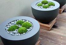 Planters / Garden Planters