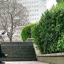 Personalberatung China / Sammlung zum Thema Human Resources und Recruitment in China mit einem Schwerpunkt im Bereich Personalbeschaffung, Personalsuche, Personalvermittlung und Personalberatung.
