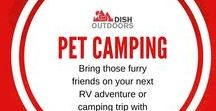 Pet Camping / Bring those furry friends on your next RV adventure or camping trip with these great tips and tricks!