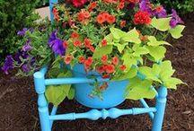 Garden Ideas / Different ideas for the garden