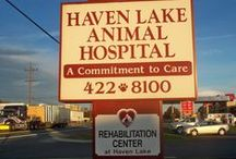 Meet the Haven Lakers / Haven Lake staff and services
