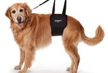 Helpful Pet Solutions / Creative receipes, crafts, and useful products for your pets.