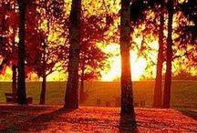Sunrise & sunset / by ___ⓐⓗⓜⓔⓓ___