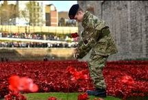RBCS pupil plants the last poppy / Blue Coat Year 9 cadet Harry Hayes was honoured to be chosen to plant the last ceramic poppy in the Tower of London installation commemorating the soldiers who lost their lives in World War 1. Here are some photos of the day's events.