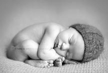 Photography - Newborns / by Kerri Korol