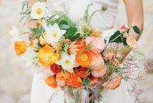 Orange || Wedding Inspiration / Orange || Wedding Inspiration