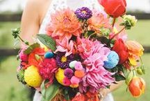 Multi color || Wedding Inspiration / Multi color || Wedding Inspiration