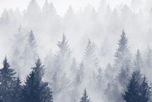 * Hiver / Winter #winter #snow #cold season #hiver