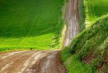 *road*