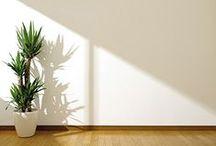 Peinture végétale / Peinture intérieure à base d'huile végétale issue de ressources renouvelables. Facile à réaliser. Couleurs usines teintées dans la masse. Une ou deux couches suivant support. 1L = 10 m²