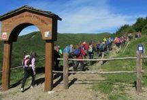 Montagna Italiane / Escursioni in montagna