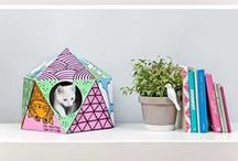 PET DESIGN | Architempore