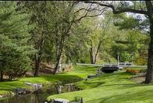 Gardens|Landscaping / by iheartnyc