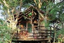 How about we go hideout in your treehouse