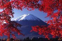 Japan / by Juulia Hyle