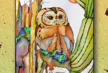 Tucson Style / by Darrelyn Olson