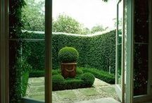 Courtyards / Peaceful tranquil private courtyard areas