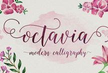 ☆ Typography ☆