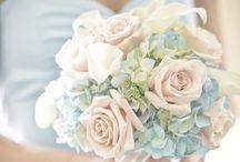 ☆ Dream Wedding ☆ / My dream wedding