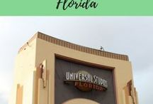 Disney World and Florida Theme Parks / Planning your Florida theme park vacation, including Walt Disney World's parks, Universal Studios theme parks, Legoland and Busch Gardens.