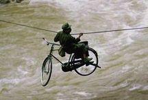 Bringaszállítás / Transportation / Szállítás bringán