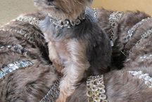 Bear: Our Collection Mascot / Gemstone Jewelry Teacup Yorkie