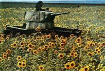 Interwar HISTORY
