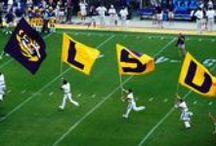 Sports / The best sports events and attractions in the South