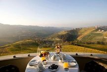 Food & Nature Italy / http://www.oilwineitaly.com Landscape and wine&oil and food