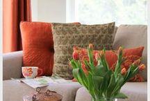 Couches & Cushions / by snehitha seshadri